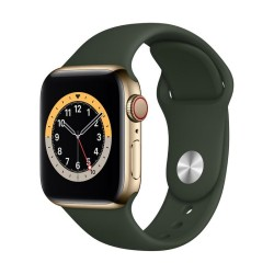Apple Watch Series 6 GPS + Cellular, 40mm Gold Stainless Steel Case with Cyprus Green Sport Band