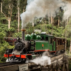 Puffing Billy Steam Train Ride & Half-Day Tour